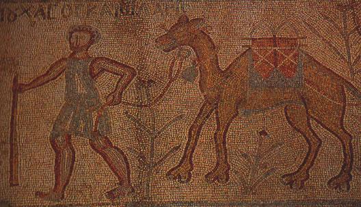route2-chameau