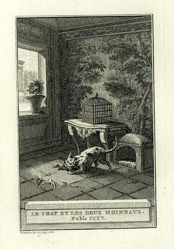 Le chat et les deux moineaux