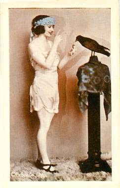 POSTCARD - CHICAGO - EXHIBIT SUPPLY COMPANY - ARCADE CARD - PIN-UP - WOMAN STANDING FEEDING LARGE BIRD - TINTED SERIES - 1920s
