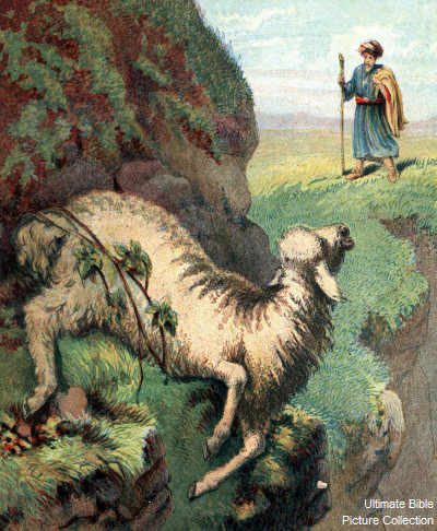 Illustration for Bible Stories and Pictures (Religious Tract Society, c 1890).