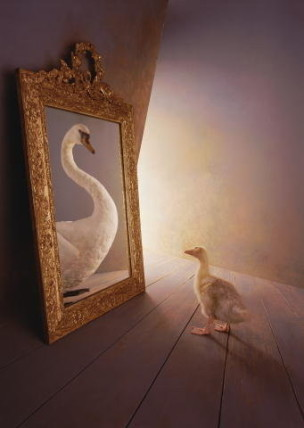 duck mirror swan painting birdreflection-Andrea Cullen