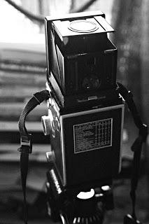 Rolleiflex automat rear