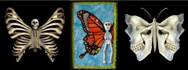 Papillon crane XXIeme siecle