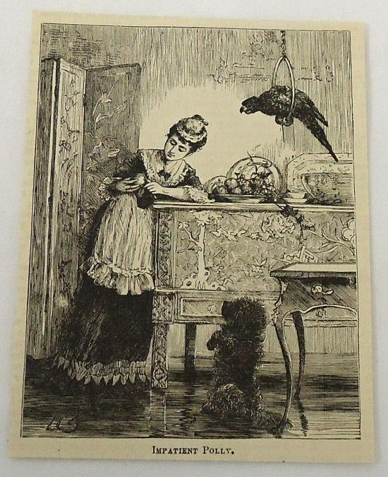 1882 magazine feminin