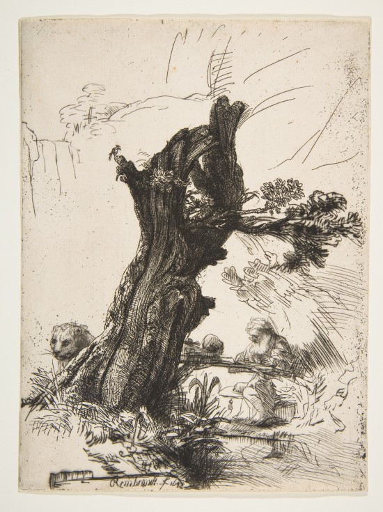 Rembrandt Saint Jerome Beside a Pollard Willow 1648