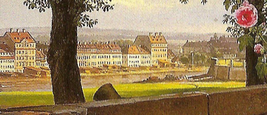 Dahl_JulieVogel_Elbe_Detail