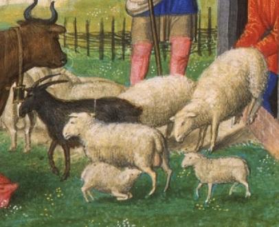 Giotto_Scrovegni_Da Costa_Heures_Avril