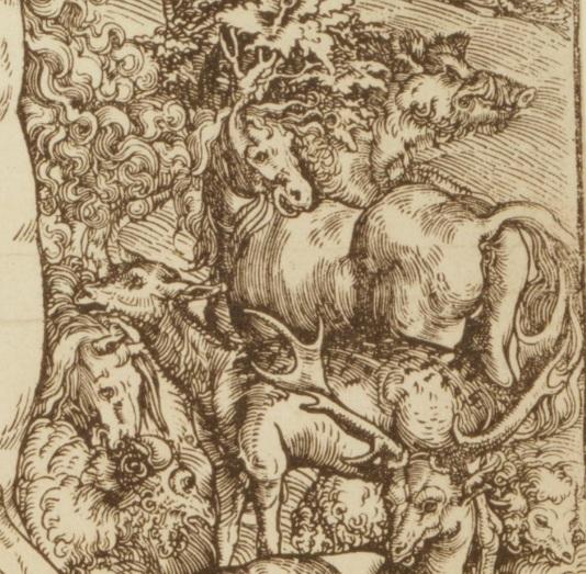 1509_Adam_Eve_Cranach_detail