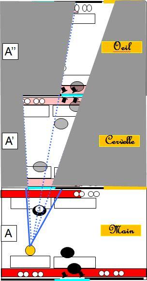 Caillebotte Dans un Cafe plan trois etages