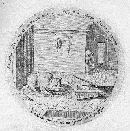 Daniel Heinsius, Emblem from Emblemata Amatoria, 1621