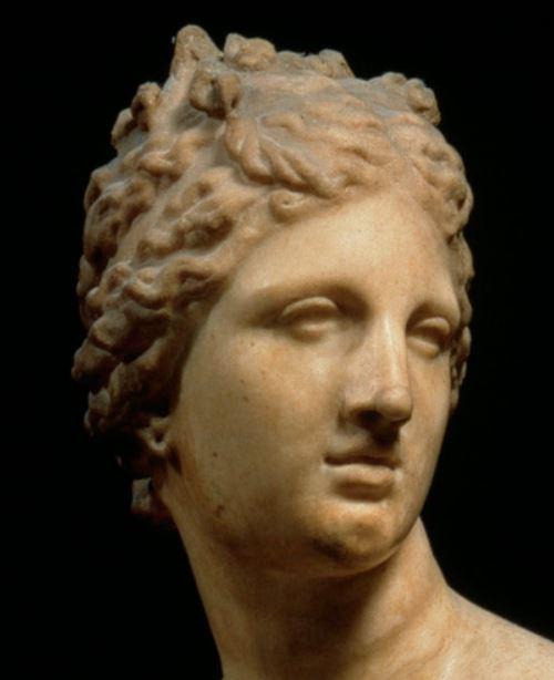 Venus Medicis dite pudica