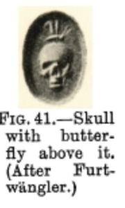 Furtwangler Skull butterfly
