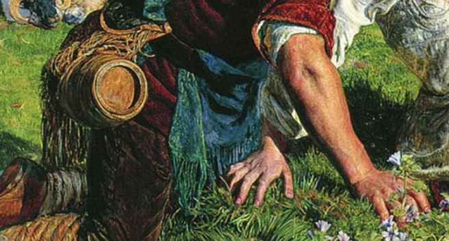 William_Holman_Hunt The hirelong shepherd barrique mains