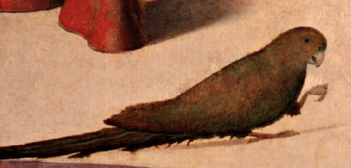 1500 Carpaccio deux dames venitiennes perroquet