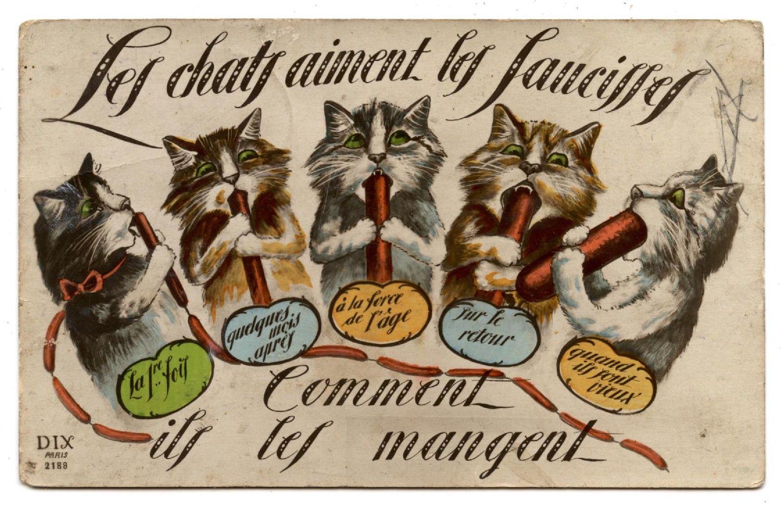 carte-postale-chat-saucisse