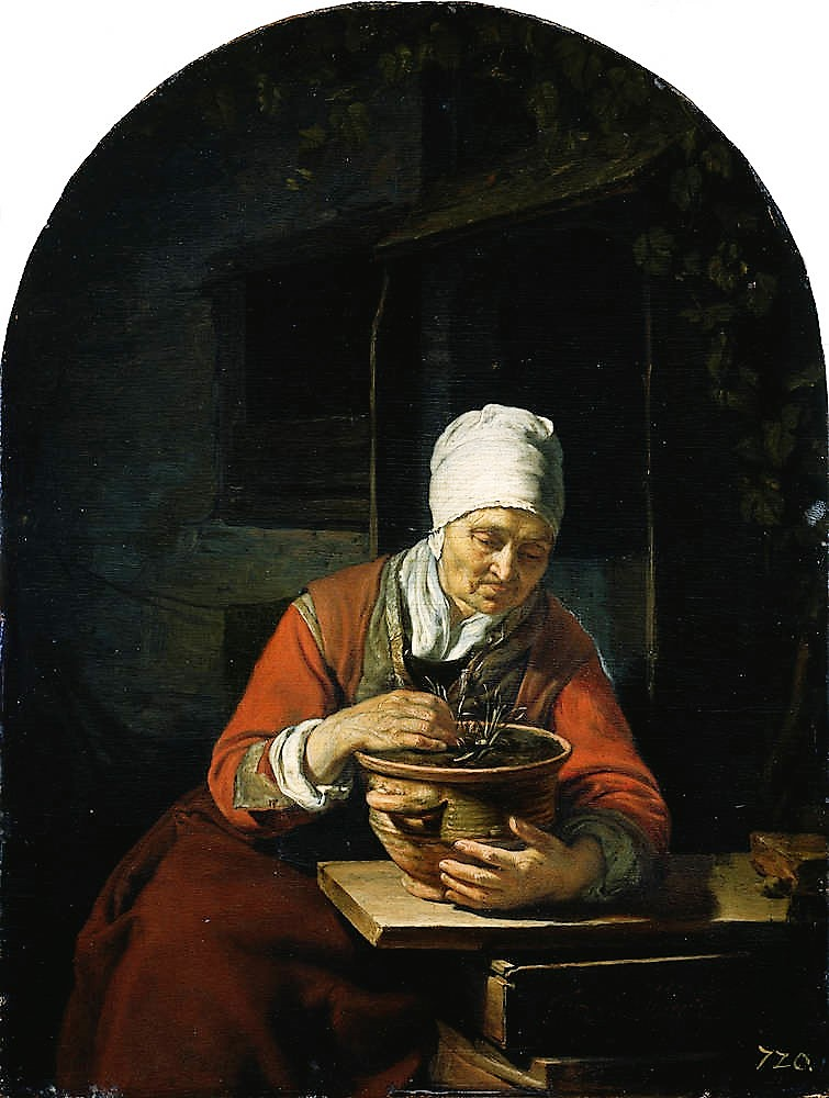 Frans_van_Mieris_(I)_1650-55 old_Woman_with_a_Flowerpot Gemaldegalerie Alte Meister dresde
