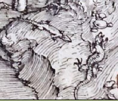 Durer La fuite en Egypte detail salamandre