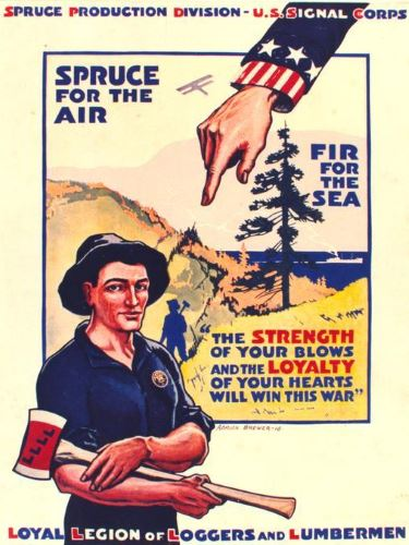 Epicea pour l'air, sapin pour la mer USA 1918 affiche de Adrian Brewer