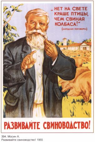 URSS 1955 Intensifier la production porcine