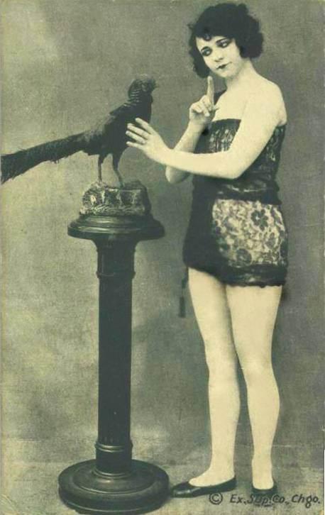 postcard-chicago-exhibit-supply-company-arcade-card-pin-up-woman-shushing-stuffed-bird-greenish-grey-1920s