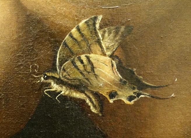 Agnolo_bronzino-_Portrait of a dwarf Morgantе recto1552,Offices detail papillon