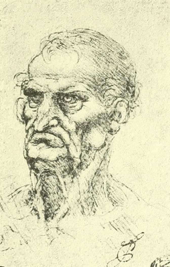 Léonard de Vinci Tete d'homme age Louvre