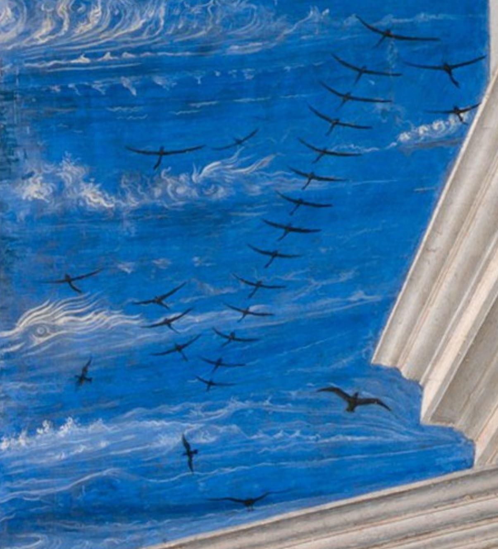 Fra Carnevale 1467 La naissance de la Vierge MET appentis ciel