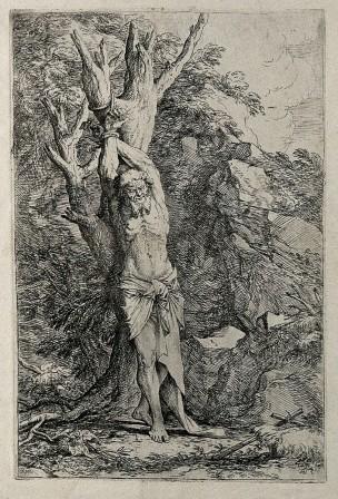 Rosa 1661 Albert compagnon de Saint Guillaume de Maleval gravure