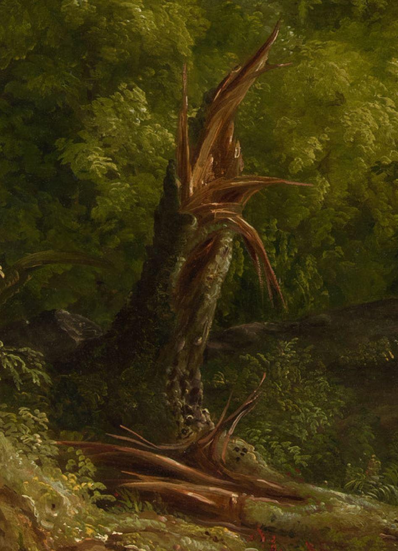 Cole 1836 Vue du mont Holyoke a Northampton, Massachusetts, apres l'orage — The Oxbow MET detail2