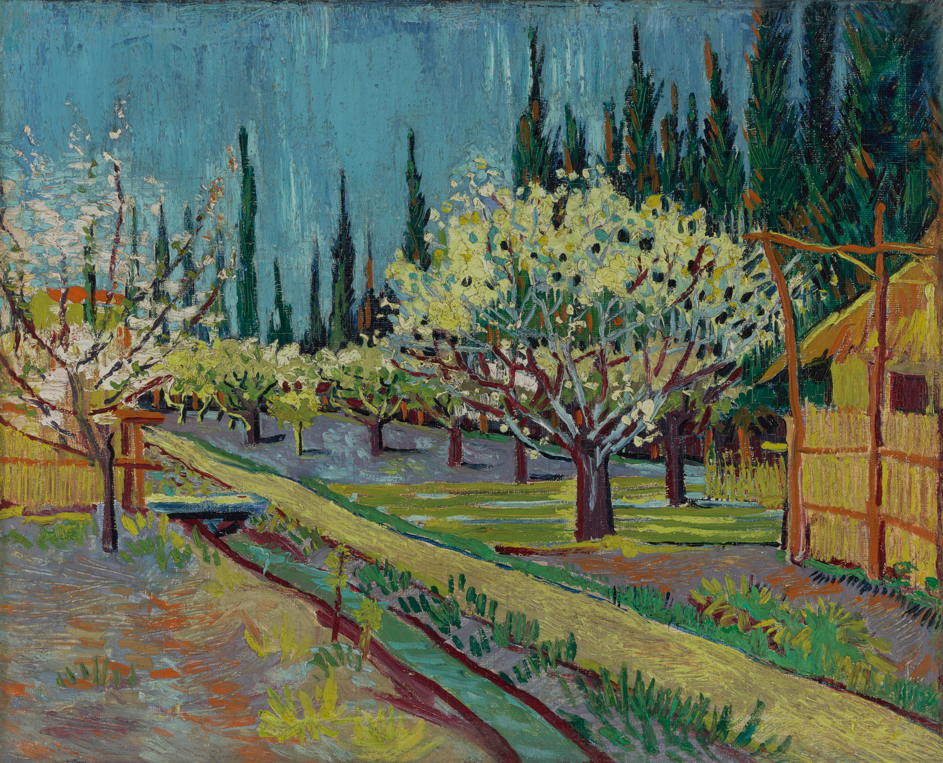 Van-Gogh-1888-Orchard-Bordered-by-Cypresses-Yale-University-Art-Gallery.