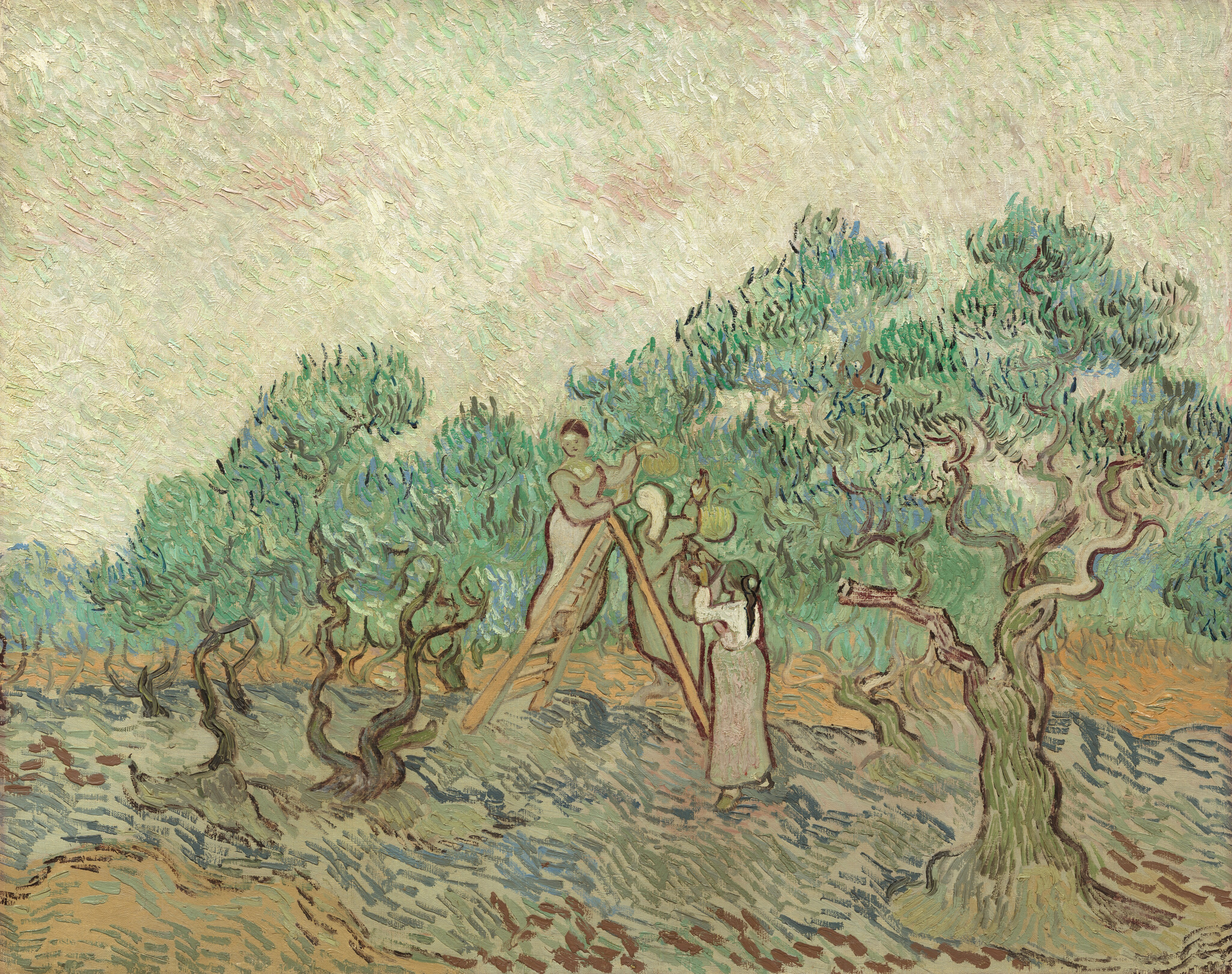 Van Gogh 1890 avril Femmes cuillant des olives F656 NGA Washington2