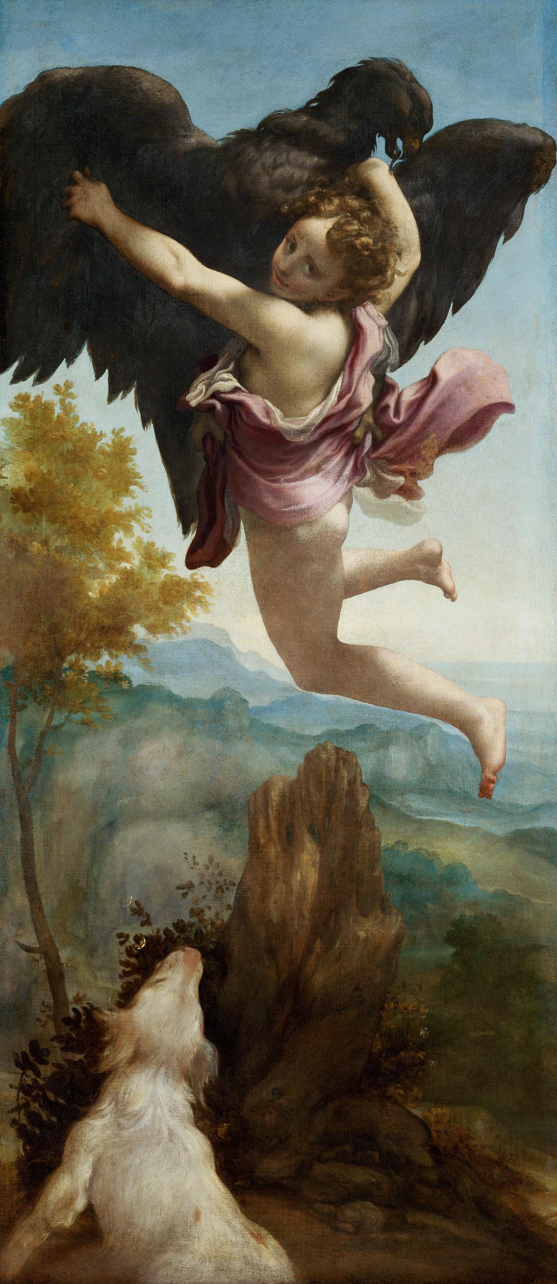 Correge 1530 ca Enlevement de ganymede Kunsthistorisches Museum Wien 163,5× 72 cm