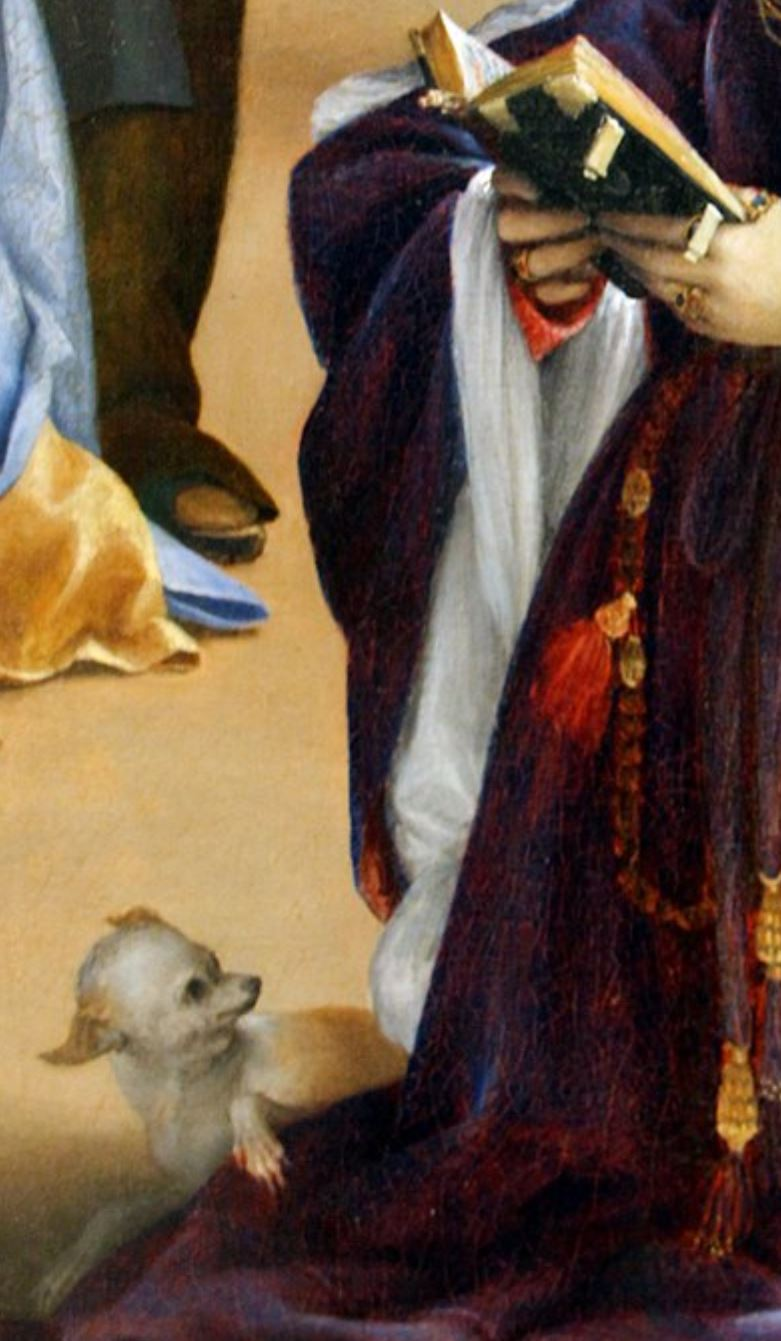 Lotto 1521 Christ taking leave o fhis mother avec Elisabetta Rota Gemaldegalerie, Berlin detail chien