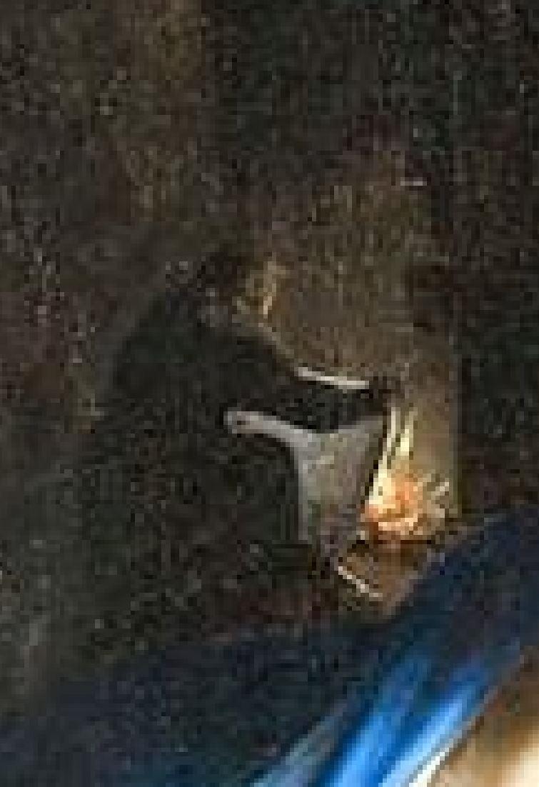 Lotto 1527-28 Nativita Pinacoteca Nazionale Sienne detail lange