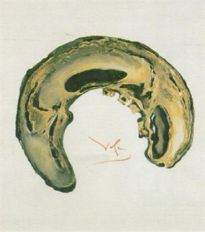 anam salvador-dalí 1968 le-crane,-anamorphose