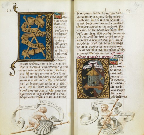 Bibliotheque de l'Ecole des Beaux-Arts, Ms.Mas 0137 p 218-19